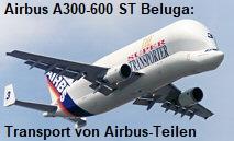 Airbus A300-600 ST Beluga: Das Flugzeug wurde zum Transport für Teile der Airbus-Montage zwischen den verschiedenen Fabrikationsorten entwickelt.